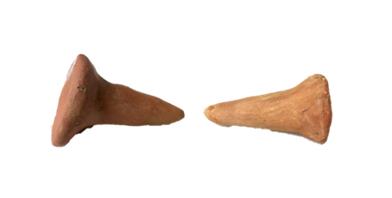 Thumb impresses are still visible on these two oxidised orange Kiln stilts
